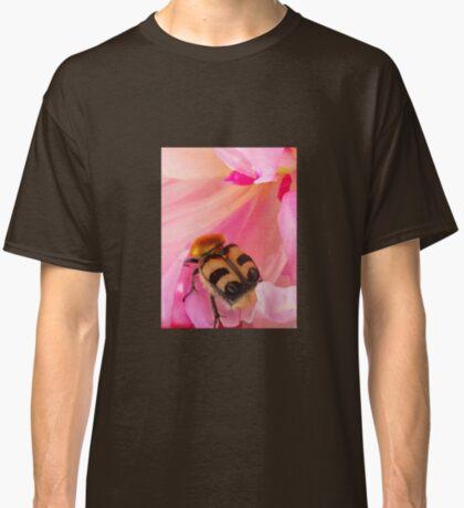 Bee Beetle Classic T-Shirt
