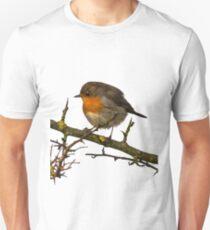 Wild Robin on a Branch T-Shirt