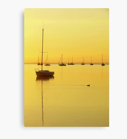 Early Morning Yellow Glow Canvas Print