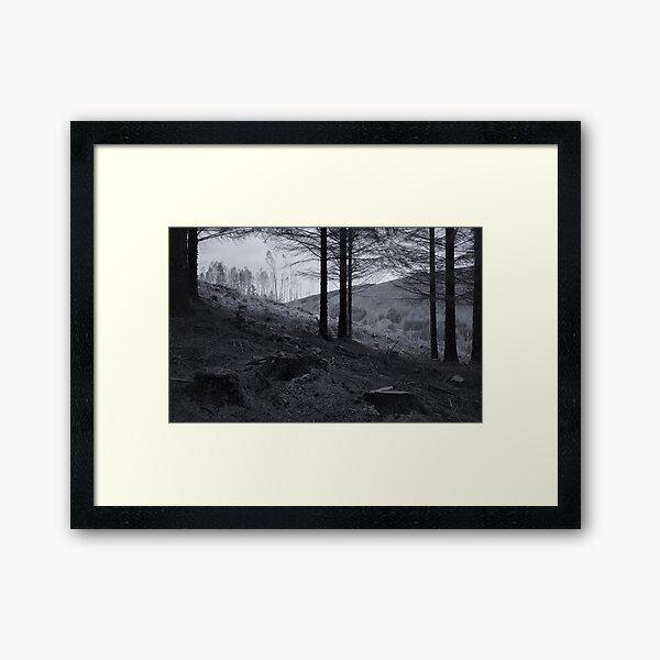 The End of Monoculture Framed Art Print
