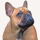 Erik the frenchie 2 by Cazzie Cathcart