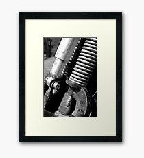 Springer - B&W Framed Print