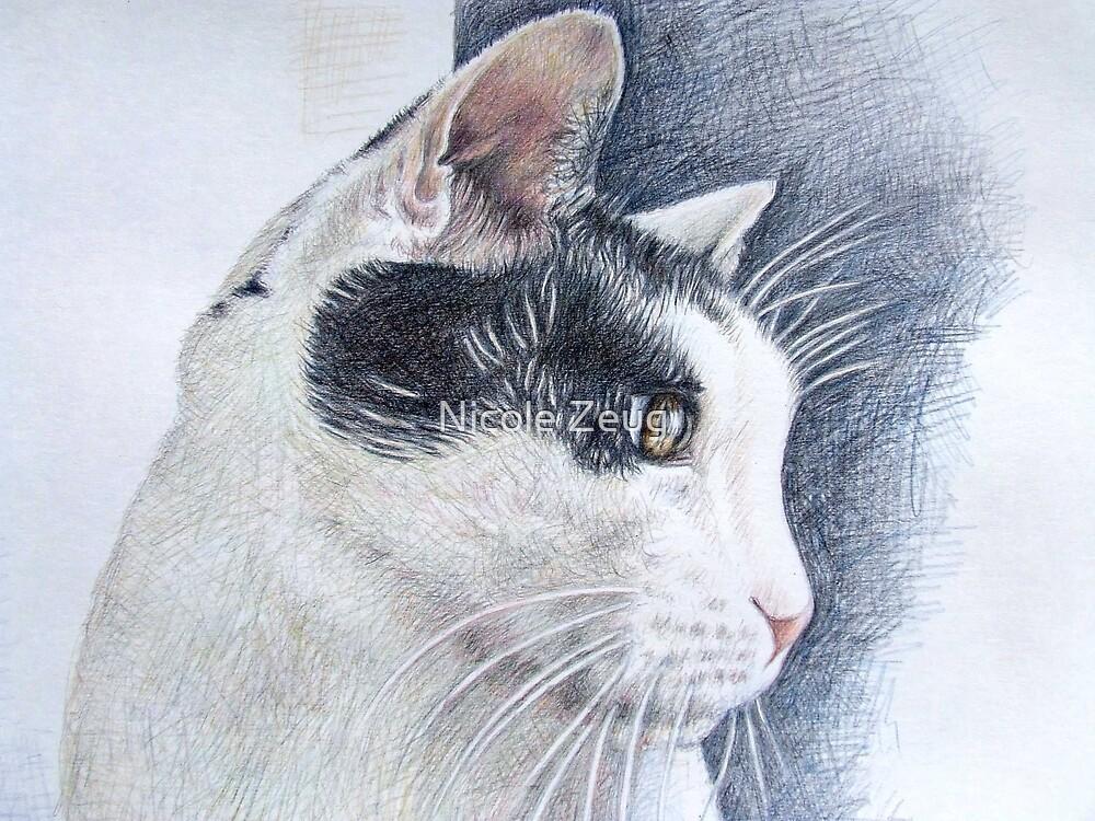 Tomcat Lucky by Nicole Zeug