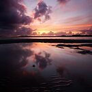 Sunset Colors by Avena Singh