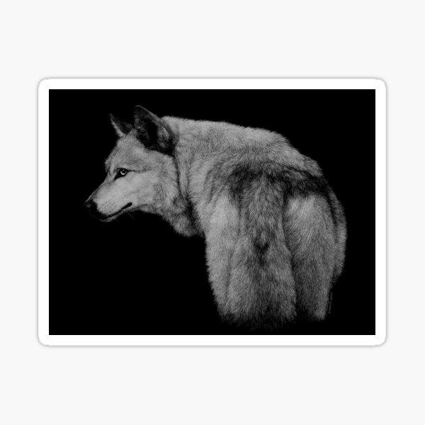 Hambone the gray wolf Sticker