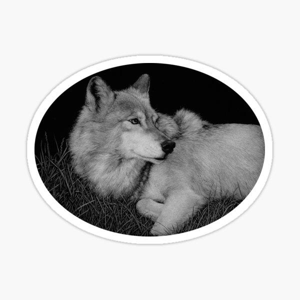 Little John the gray wolf Sticker