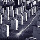 GraveYard by Mark Martsolf