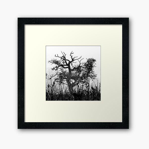 Moon Tree version 2 Framed Art Print
