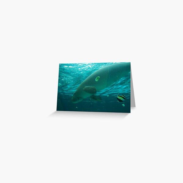 Dugong Greeting Card