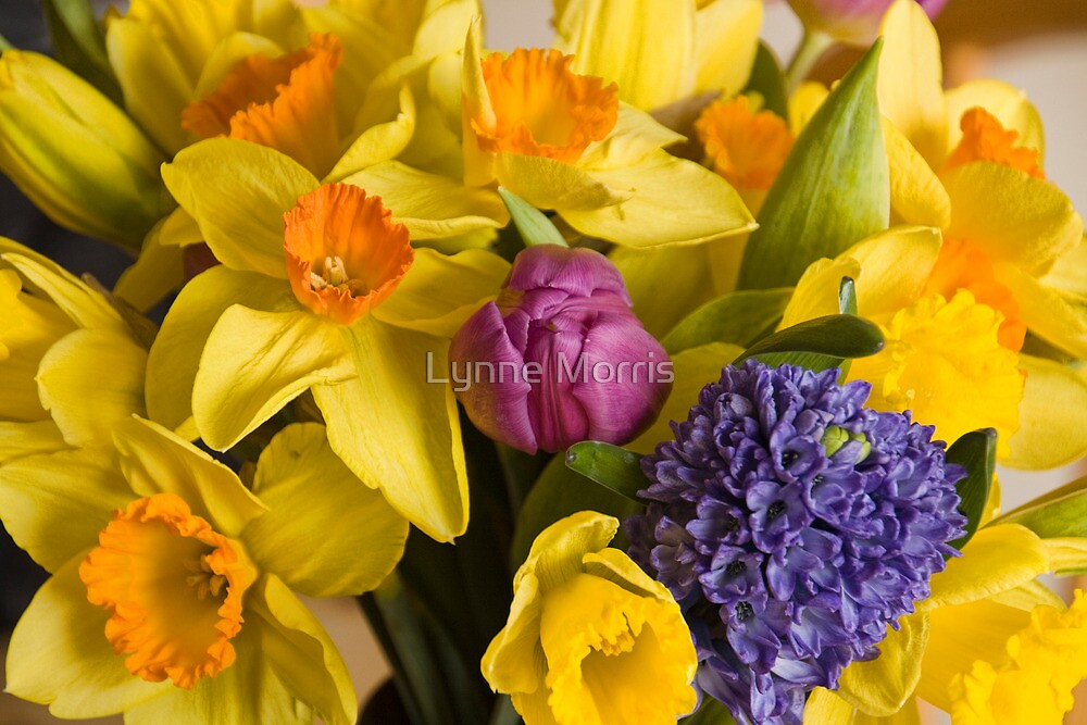 A Spring Bunch by Lynne Morris