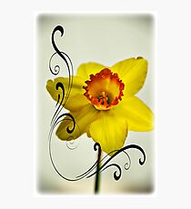 Spring Melody Photographic Print
