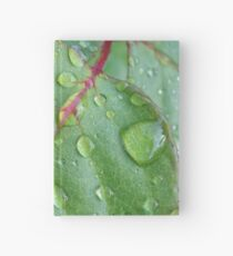 After the rain Hardcover Journal