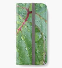 After the rain iPhone Wallet/Case/Skin