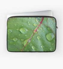 After the rain Laptop Sleeve