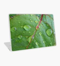 After the rain Laptop Skin