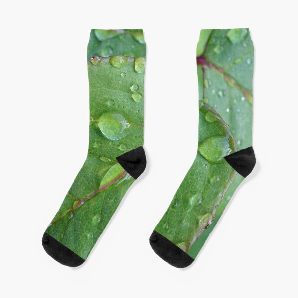 After the rain Socks