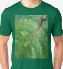 After the rain Slim Fit T-Shirt