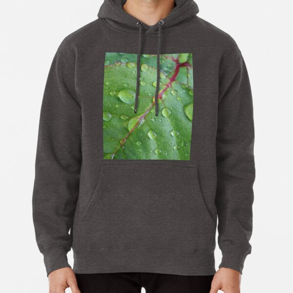 After the rain Pullover Hoodie