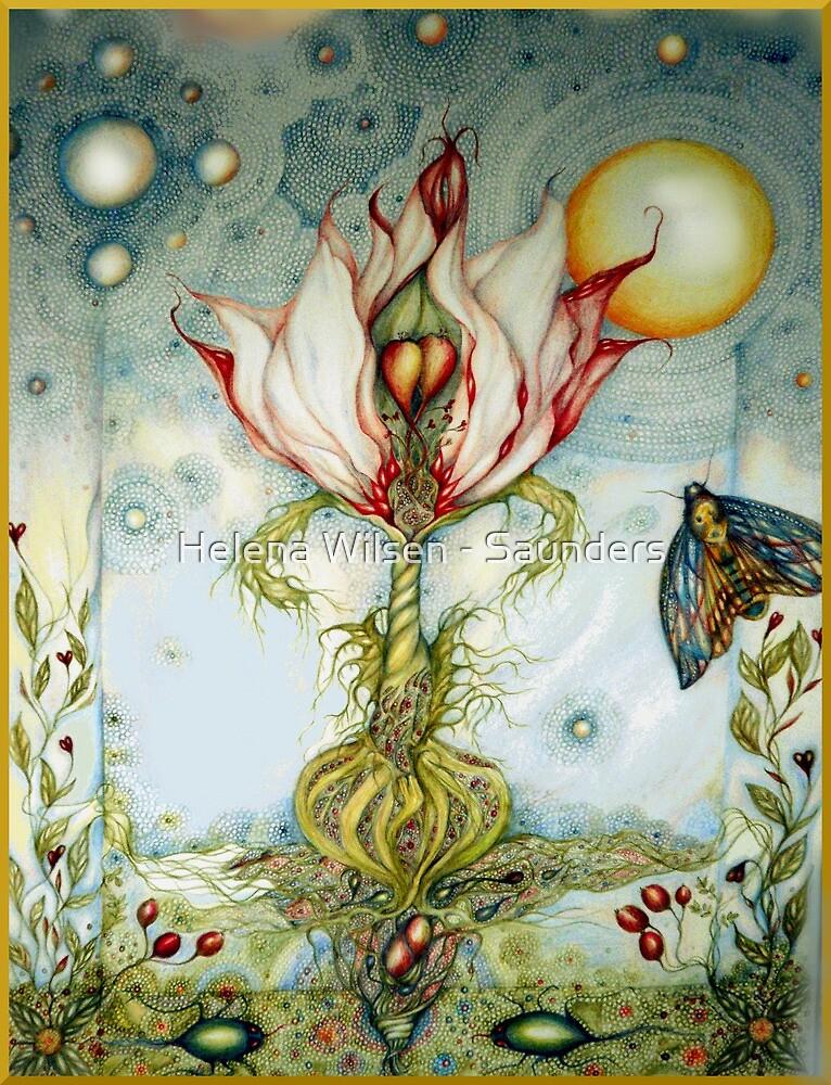 Fetch Me that Flower by Helena Wilsen - Saunders