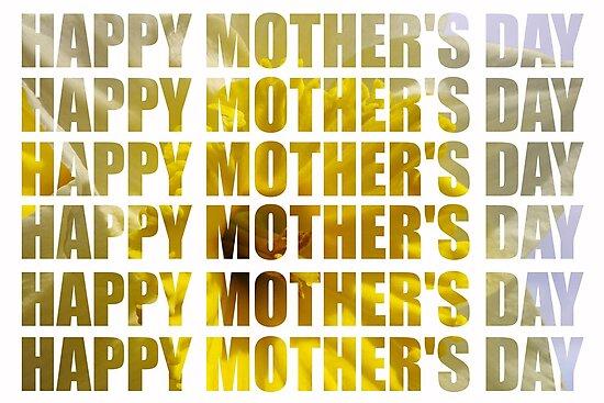 cut daffodil mum's day by dedmanshootn