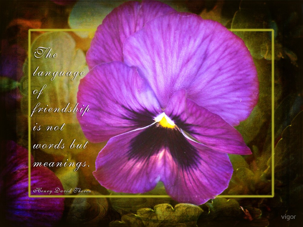 friendship (for Dreamflower) by vigor