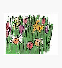 Spring  Garden Photographic Print