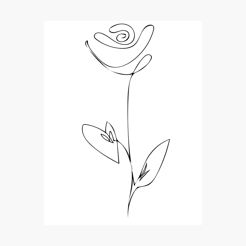 Blume   one line drawing   line art