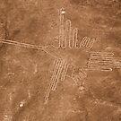 Colibri (Hummingbird), Nazca Lines, Peru by Erik Schlogl