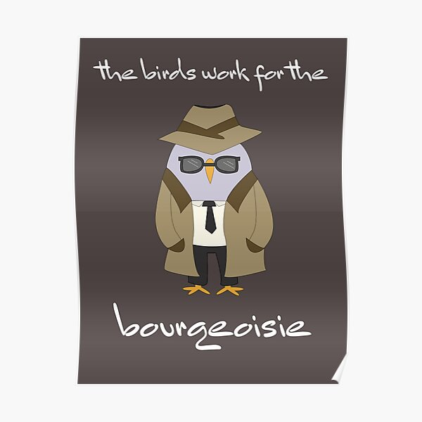 the birds work for the bourgeoisie meme detective Poster