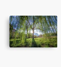 Weep Willow, Weep Canvas Print