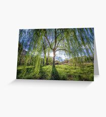 Weep Willow, Weep Greeting Card