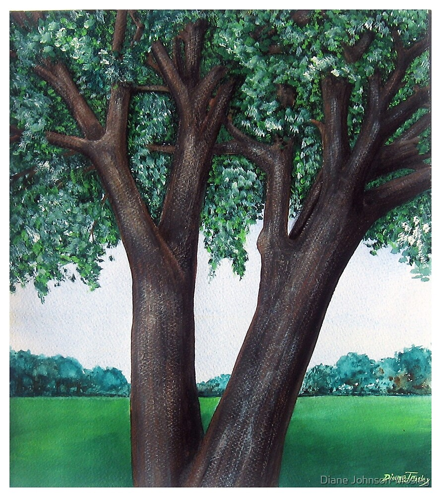 Summer Shade by Diane Johnson-Mosley