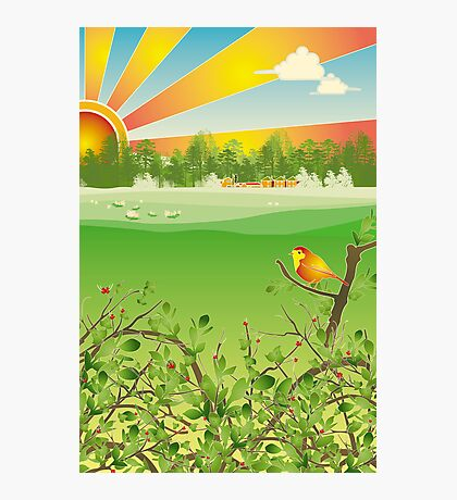 Birdy Photographic Print