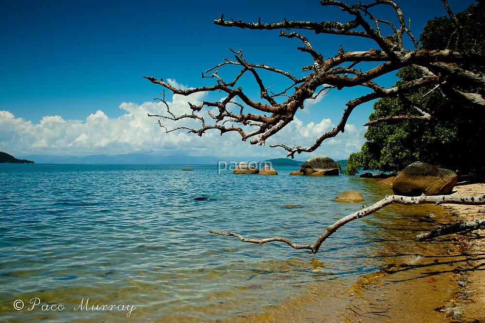 Dunk Island by pacom