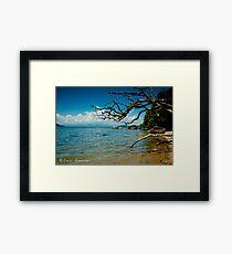 Dunk Island Framed Print
