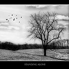 Standing Alone by Trudy Wilkerson