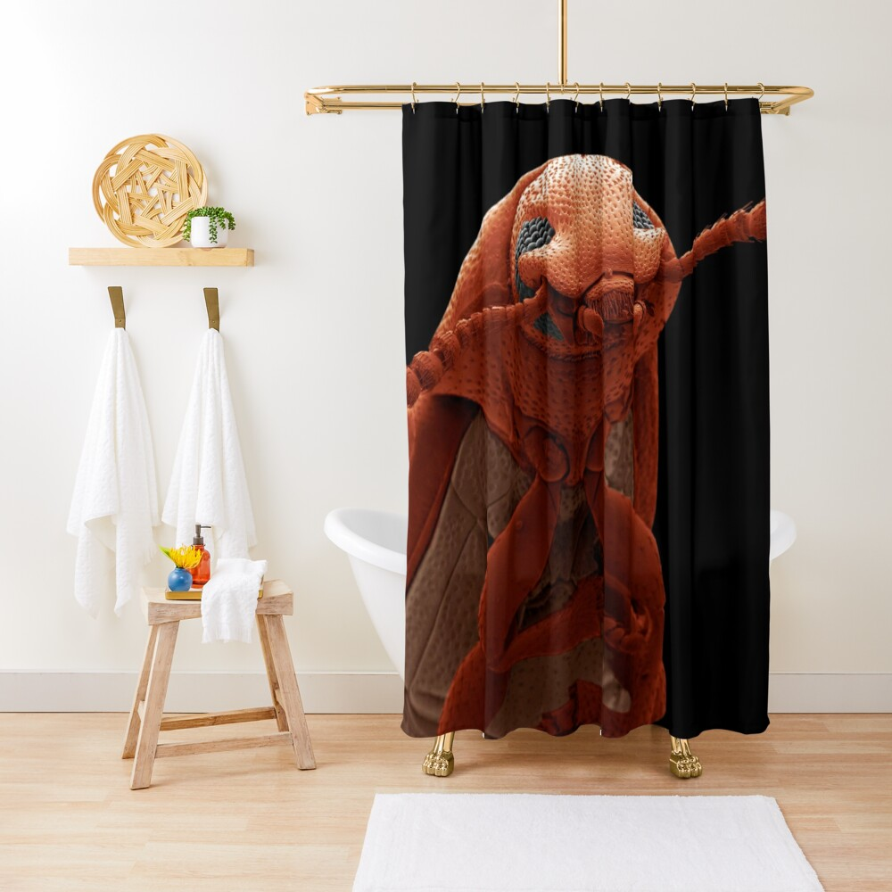 Science photographer of the year, pest, art, sculpture, animal, one, anatomy, biology, invertebrate, insect Shower Curtain