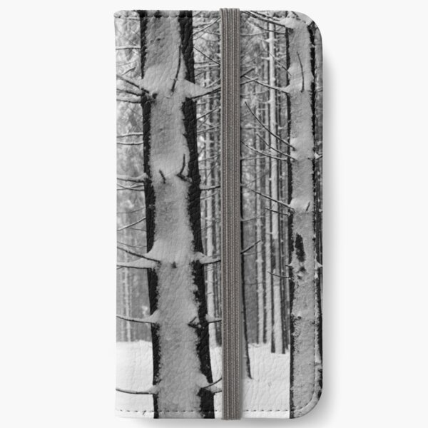 Forest in winter iPhone Wallet