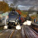 Steam Trains by Trevor Kersley