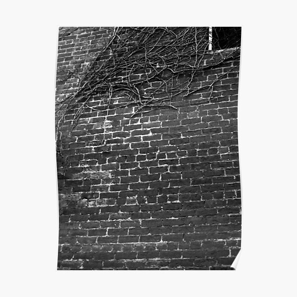 Red Brick Building and Ivy Poster