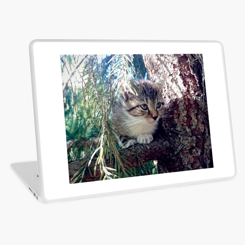 Tiger auf Baum Laptop Folie