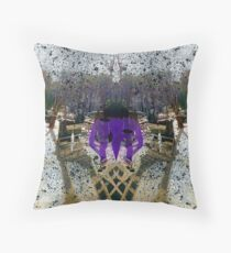P1390022 _XnView _Iographica _GIMP Throw Pillow