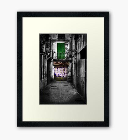 Magraner Framed Print
