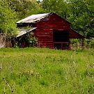 Old Red Barn by Dawn di Donato