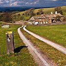 Lancashire farming country by Shaun Whiteman