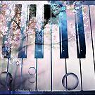 The Magic Beyond The Keys by Stephanie Rachel Seely