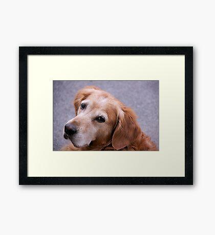 Good listener Framed Print