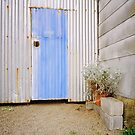 Blue Tin Door Garden by Steven Newton
