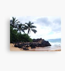 First stop on Maui Canvas Print