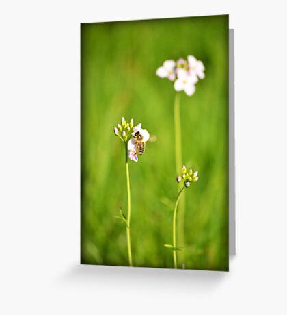 Bee Green Greeting Card